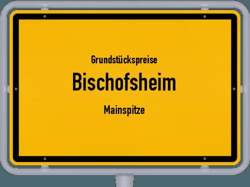 Grundstückspreise Bischofsheim (Mainspitze) 2020