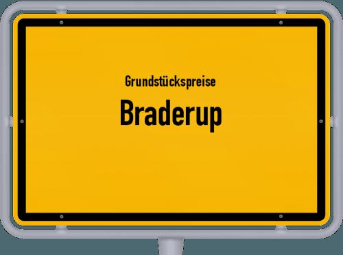 Grundstückspreise Braderup 2021