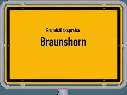 Grundstückspreise Braunshorn 2019