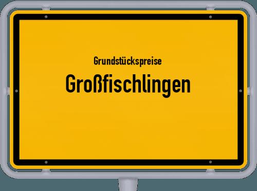 Grundstückspreise Großfischlingen 2019