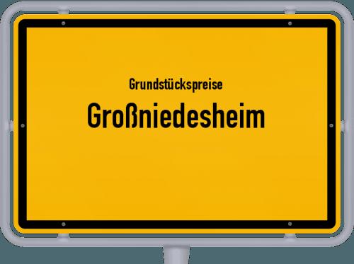 Grundstückspreise Großniedesheim 2019