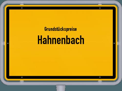 Grundstückspreise Hahnenbach 2019