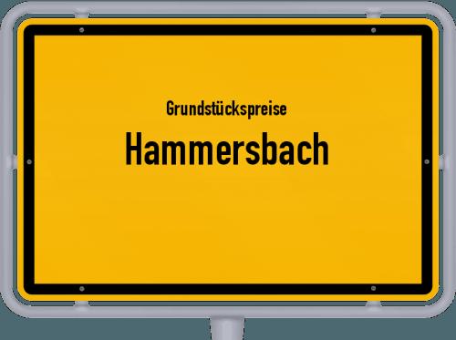Grundstückspreise Hammersbach 2019