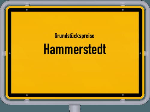 Grundstückspreise Hammerstedt 2019