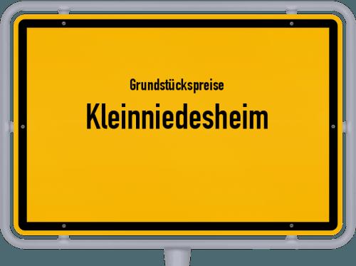 Grundstückspreise Kleinniedesheim 2019