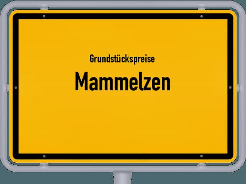 Grundstückspreise Mammelzen 2019
