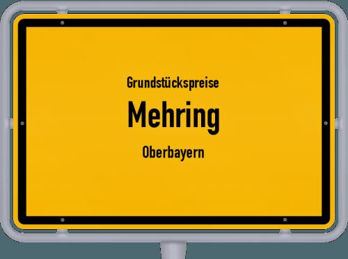 Grundstückspreise Mehring (Oberbayern) 2019