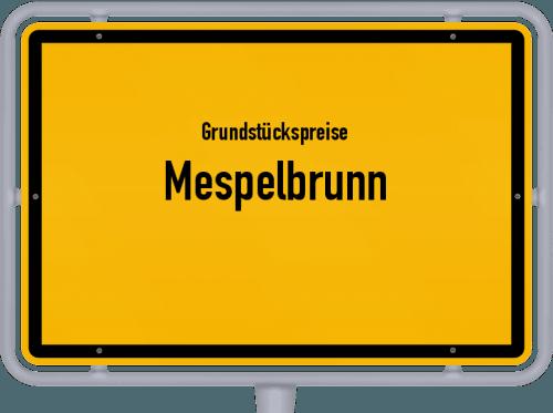 Grundstückspreise Mespelbrunn 2019