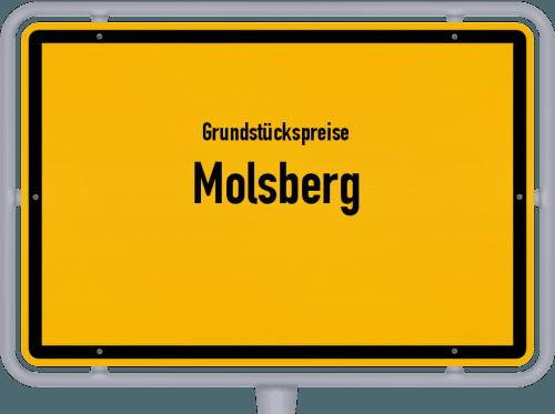 Grundstückspreise Molsberg 2019