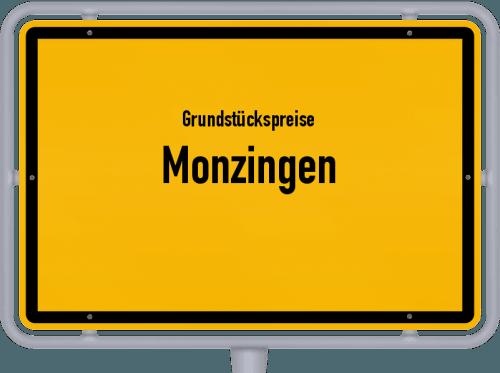 Grundstückspreise Monzingen 2019