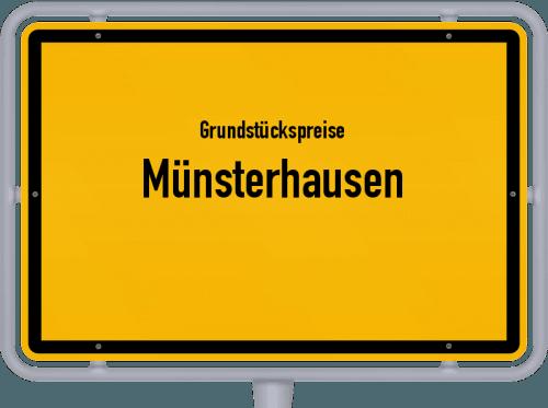 Grundstückspreise Münsterhausen 2019