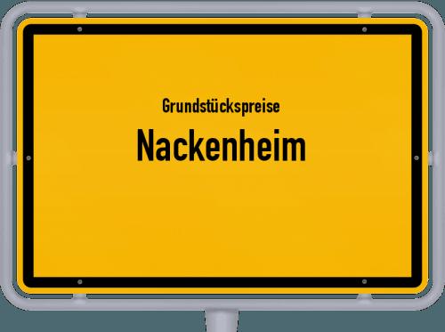 Grundstückspreise Nackenheim 2019