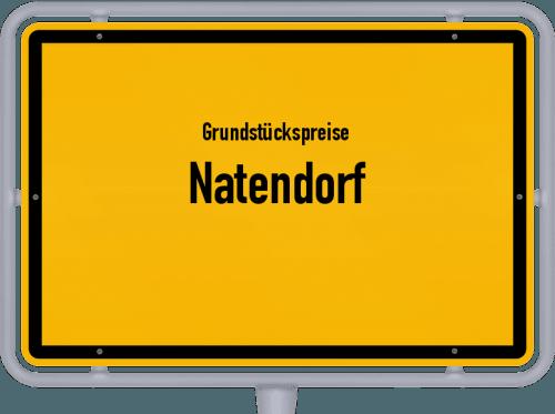 Grundstückspreise Natendorf 2021