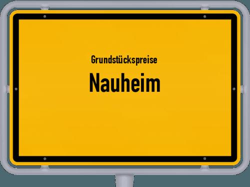 Grundstückspreise Nauheim 2019