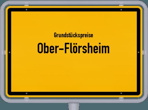Grundstückspreise Ober-Flörsheim 2019