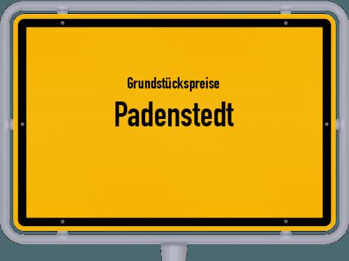 Grundstückspreise Padenstedt 2021