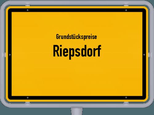Grundstückspreise Riepsdorf 2021