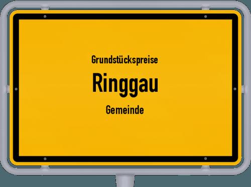 Grundstückspreise Ringgau (Gemeinde) 2019