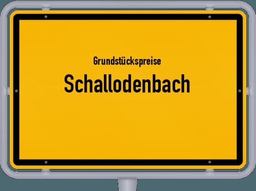 Grundstückspreise Schallodenbach 2019