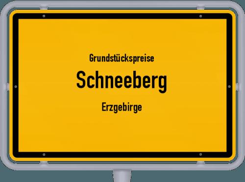 Grundstückspreise Schneeberg (Erzgebirge) 2019