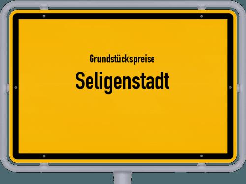 Grundstückspreise Seligenstadt 2019