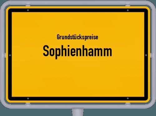 Grundstückspreise Sophienhamm 2021
