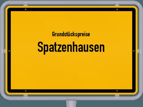 Grundstückspreise Spatzenhausen 2021