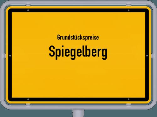 Grundstückspreise Spiegelberg 2021