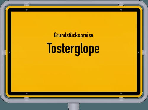 Grundstückspreise Tosterglope 2021