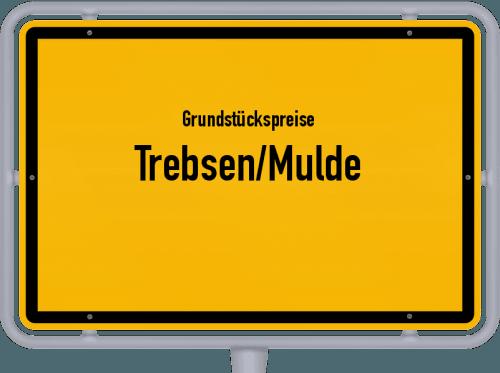 Grundstückspreise Trebsen/Mulde 2019