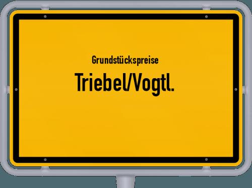 Grundstückspreise Triebel/Vogtl. 2019