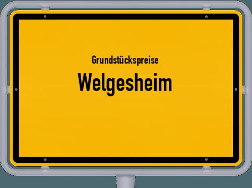 Grundstückspreise Welgesheim 2019
