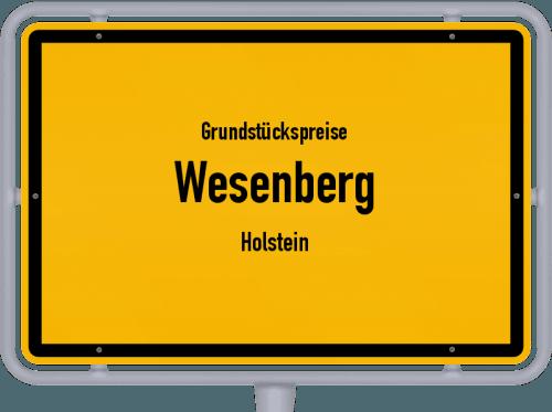 Grundstückspreise Wesenberg (Holstein) 2021