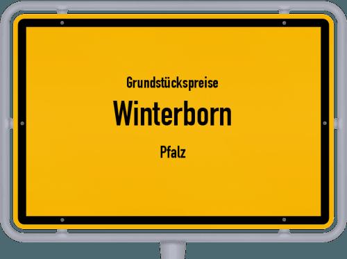 Grundstückspreise Winterborn (Pfalz) 2019