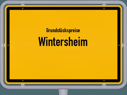 Grundstückspreise Wintersheim 2019